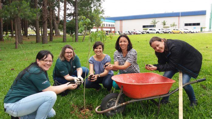CERTIFICAÇÃO GREAT PLACE TO WORK - GPTW - IMPRESS DECOR BRASIL